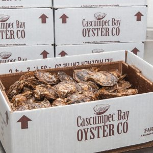 Cascumpec Bay Oysters, Box of 100 Count