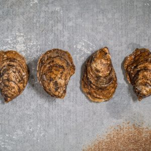 Small Choice Cascumpec Bay Oysters